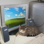 цифровизация жкх